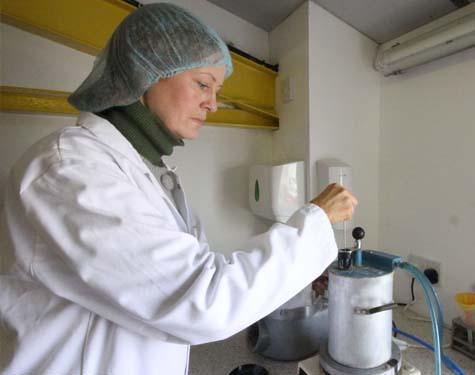 R&D Test Baking
